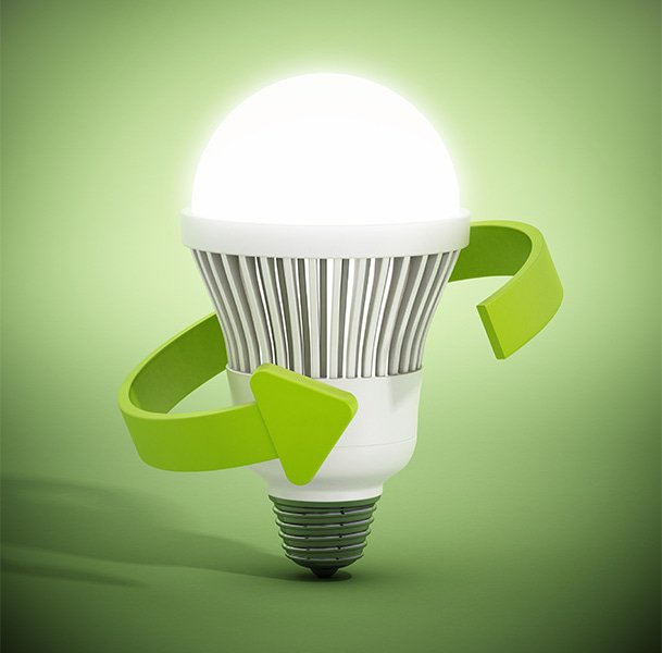 sustainable bulb
